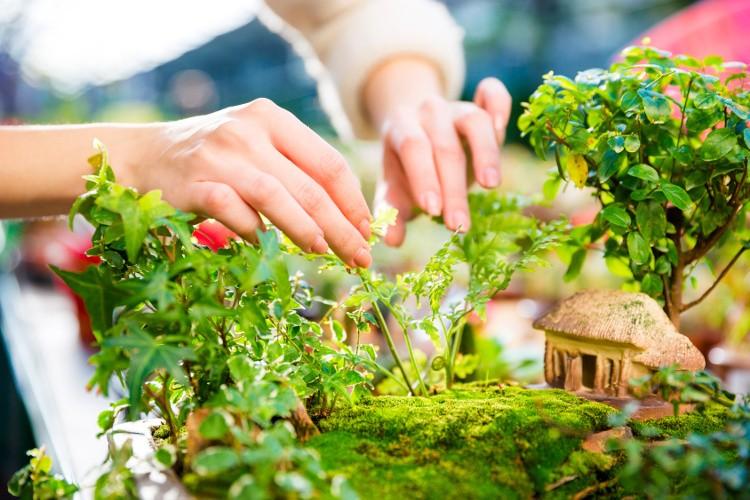 Jardin Japonais Chez Soi. 37 idées créatives pour un jardin japonais ...