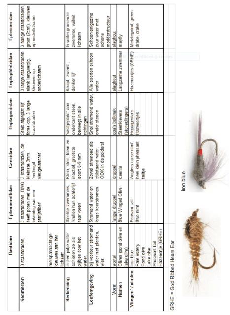 tabel1 waldo