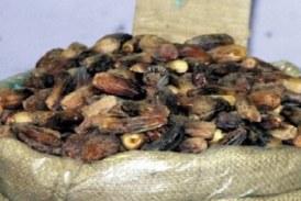البلح «كوري الشمالي» الأغلى فى سوق روض الفرج