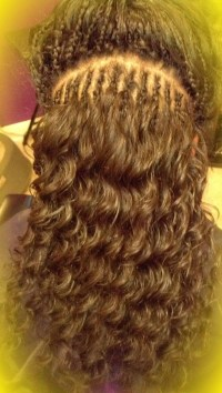 Two Layer Micro Tree Braid with human hair Mastermix
