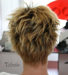 blended hair colour result
