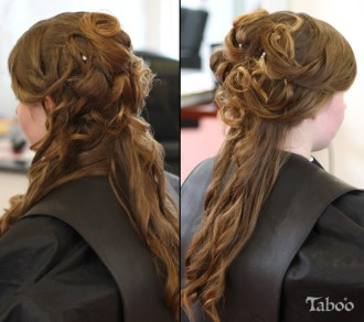Updo long hair style photo