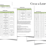Cycle 2 Reading Plans & Loop Schedules