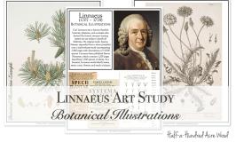 Linnaeus Art Project: Botanical Illustrations