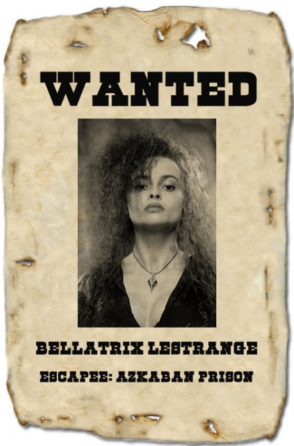 Heroes  Villains  Wanted Posters