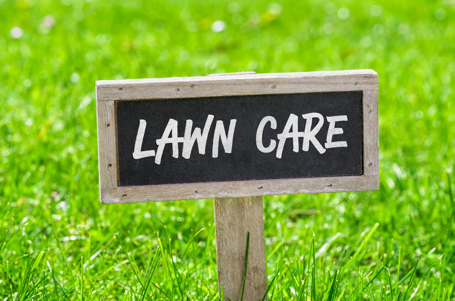 lawn care pictures free