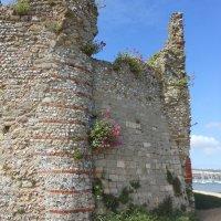 Portchester Castle As A Prison
