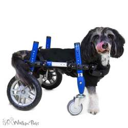 Small Of Diy Dog Wheelchair