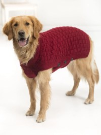 10 Stunning Examples Of Beautiful Fall Dog Sweaters | Free ...