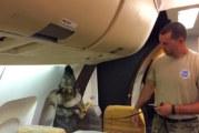 USA: Lola bruker snuten for å finne eksplosiver ombord i fly