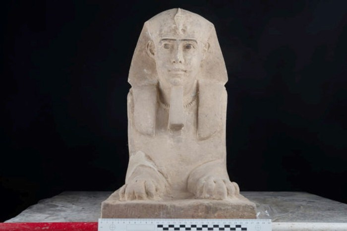 The sandstone statue of Sphinx that was discovered in Kom Ombo Temple in Aswan in upper Egypt is seen in this handout picture