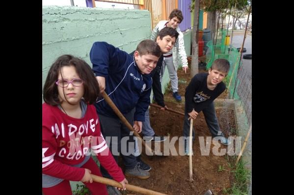 Κάθε κήπος θέλει  και ένα καλό σκάψιμο.
