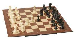 κινήσεις στο σκακι