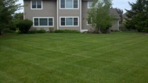 Lawn Mowing in Inver Grove Heights MN