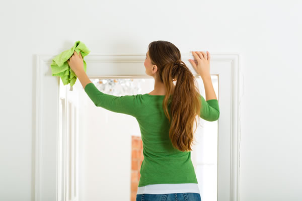 Regular Domestic Cleaning Services London Domestic Cleaners