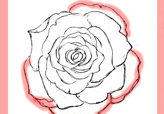How To Draw Roses -