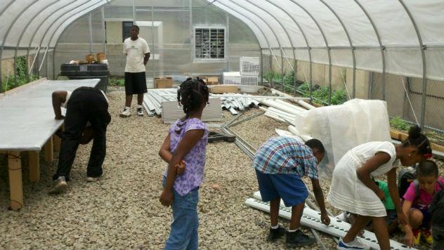 harlem-grown-greenhouse-install