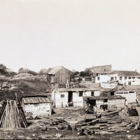 Shacks, Fifth Avenue and 101st Street Harlem 1894