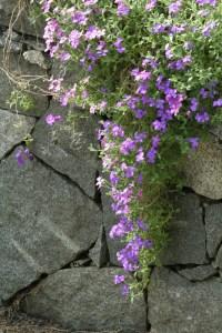 Steine fr eine Gartenmauer  Welche Steine fr welche Mauer