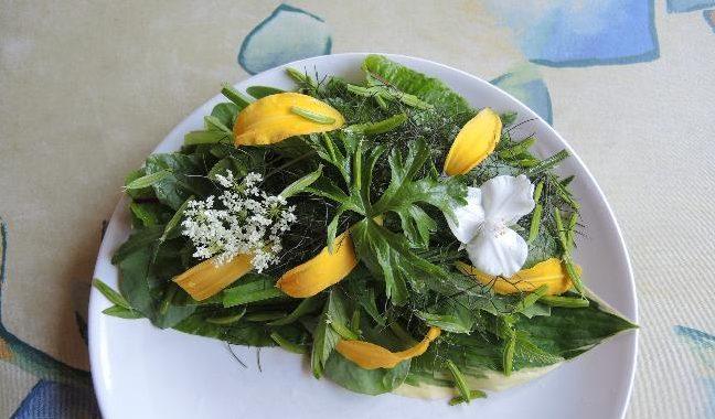 flerårige grøntsager i nyttehaven og i prydhaven
