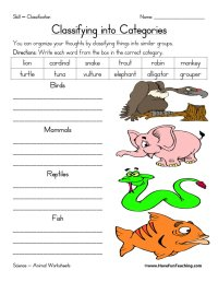 Animal Classification Worksheet | Have Fun Teaching