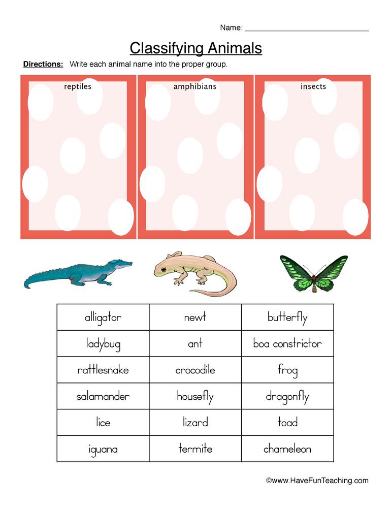 Classifying Food Worksheet