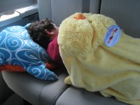 Pillow Pets Review - Plus Blankets, Slippers, and More