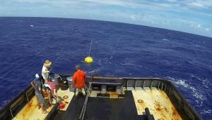 <abbr>PacIOOS</abbr> buoy