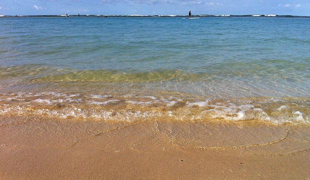 manoa-engineering-shoreline