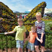 Butterfly-Garden-Epcot-Flower-Garden-2016