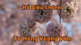 hbc-thvv-hoa-anh-dao-dc