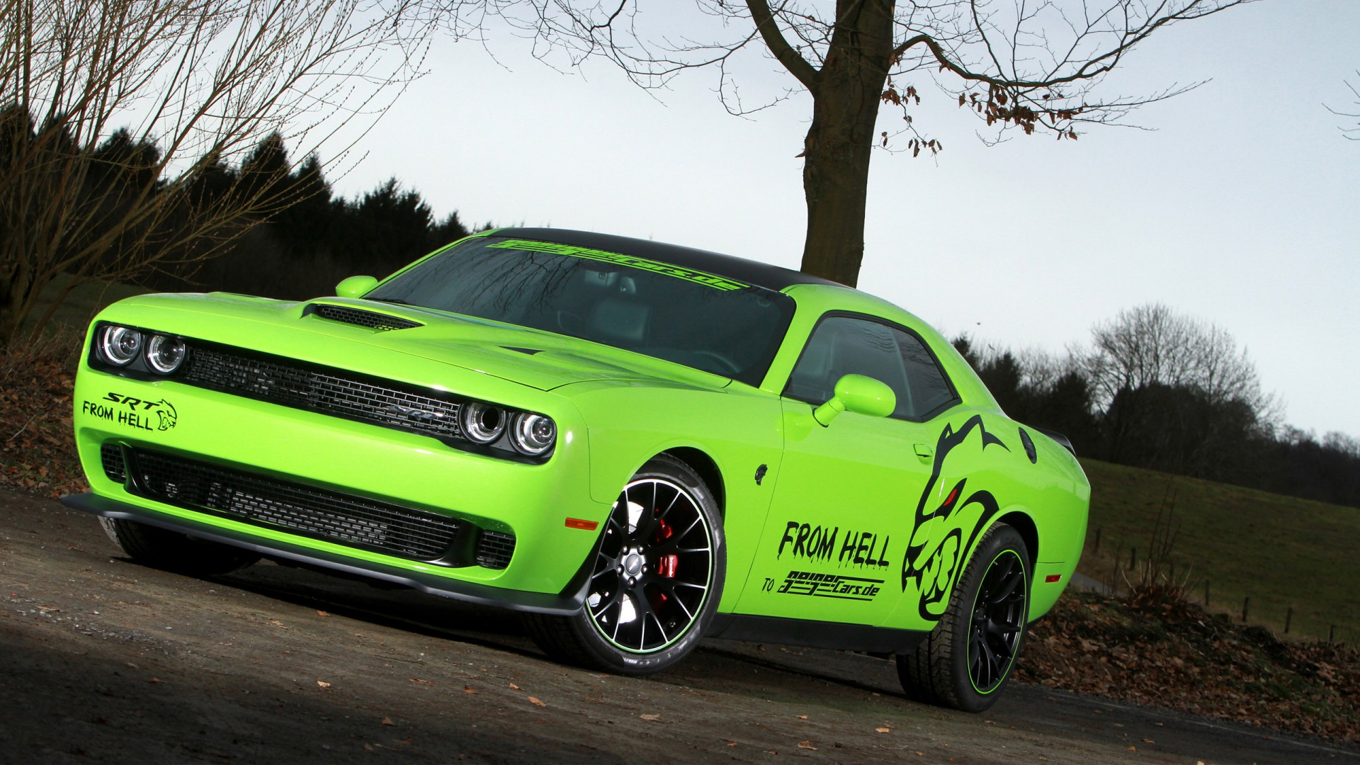 Widescreen Car Wallpapers Hd 2015 Geigercars Dodge Challenger Srt Hellcat Wallpaper