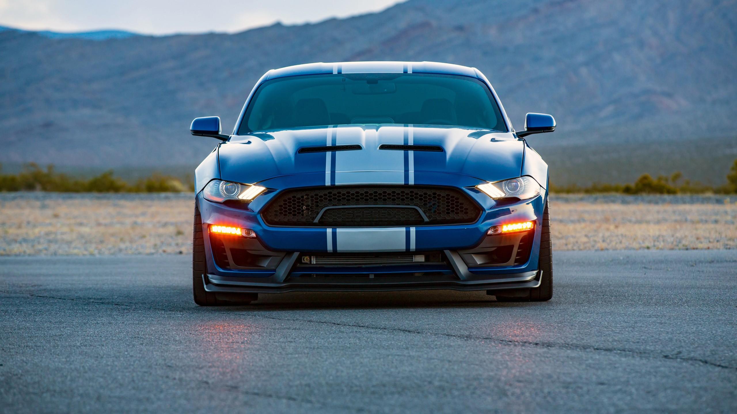 Mustang Car Wallpaper Download 2018 Shelby Super Snake Wide Body 4k Wallpaper Hd Car