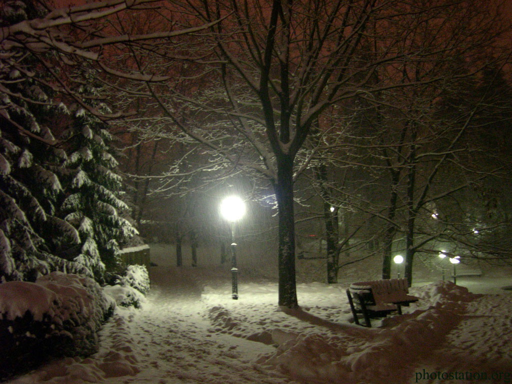 Snow Falling Live Wallpaper Download Abstract Wallpaper Pics Pictures Of Winter Tre 9307 Hd