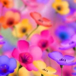 Cute Flower Wallpapers 4 Free Hd Wallpaper Hdflowerwallpaper Com