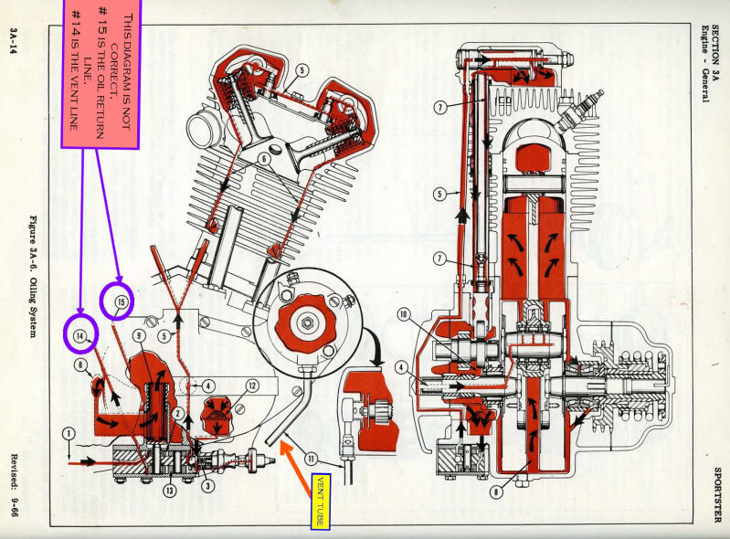 Sportster Engine Diagram Wiring Diagram