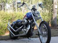 Fishtail exhaust tips - Harley Davidson Forums