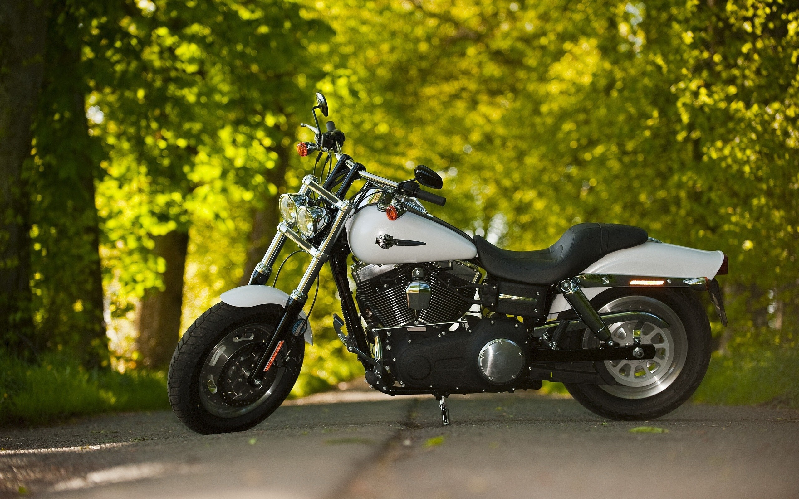 Hd Car Wallpapers Free Download Zip Black And White Harley Davidson Bike On Road Hd Wallpapers