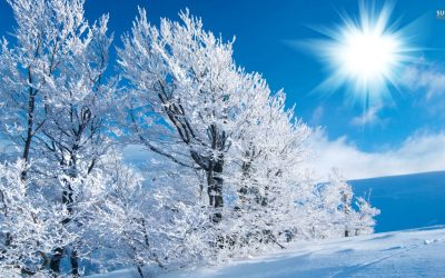 Winter Wide Wallpaper 1920×1080 | HD Wallpapers , HD Backgrounds,Tumblr Backgrounds, Images ...