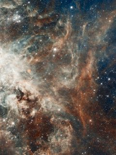 Islamic Quotes Wallpapers For Android Tarantula Nebula Ultra Hd Hd Wallpapers Hd Backgrounds
