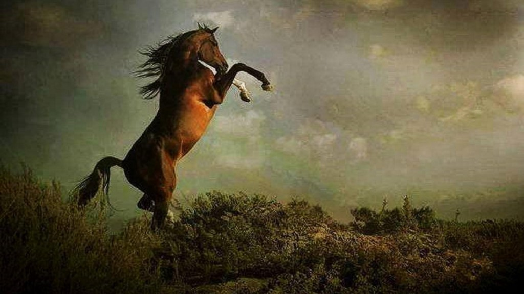 Beautiful 3d Love Wallpapers Horse Painting Wallpapers Pictures Images