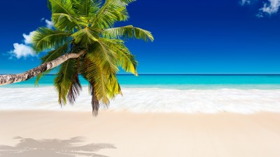 Tropical Beach Wallpapers, Pictures, Images