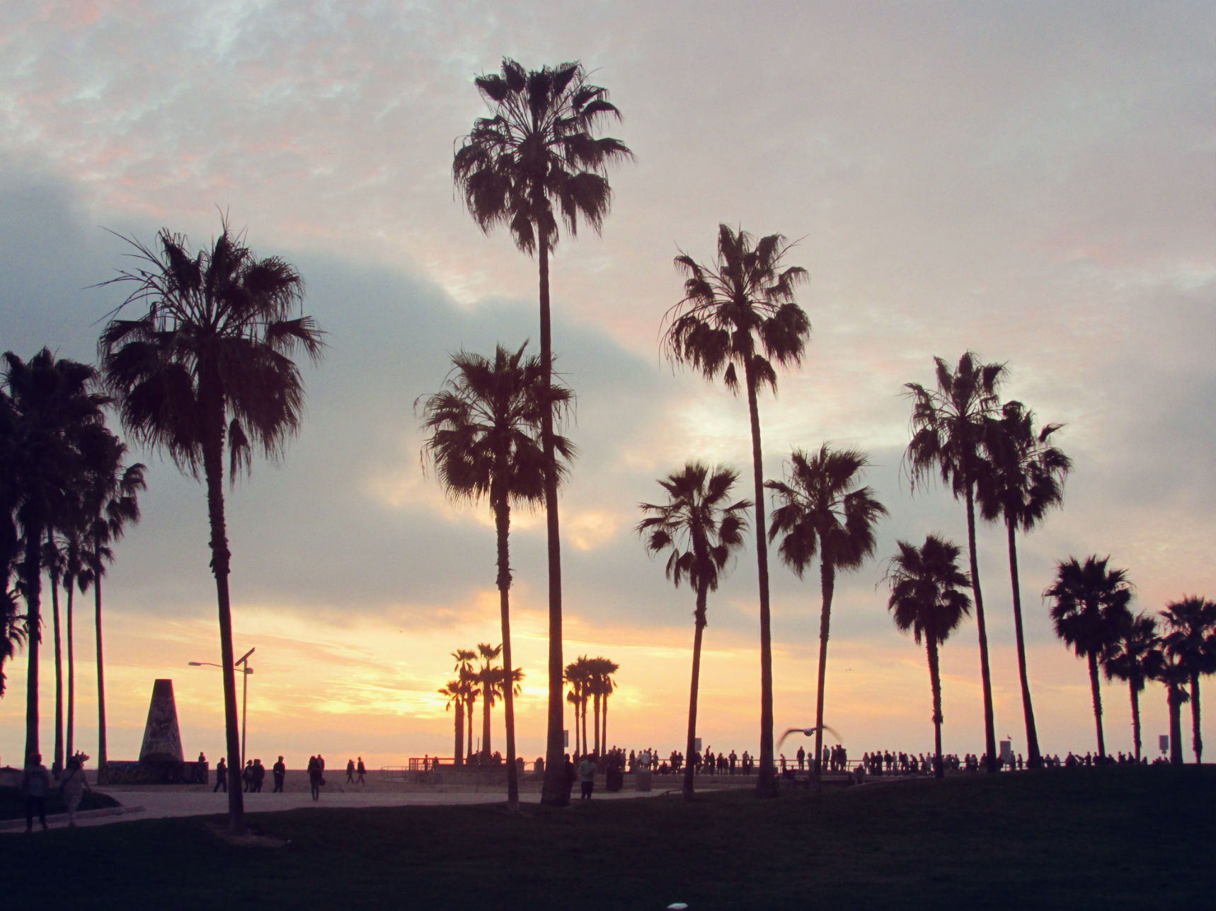 Best 3d Wallpapers For Iphone 7 Venice Beach Wallpapers Pictures Images