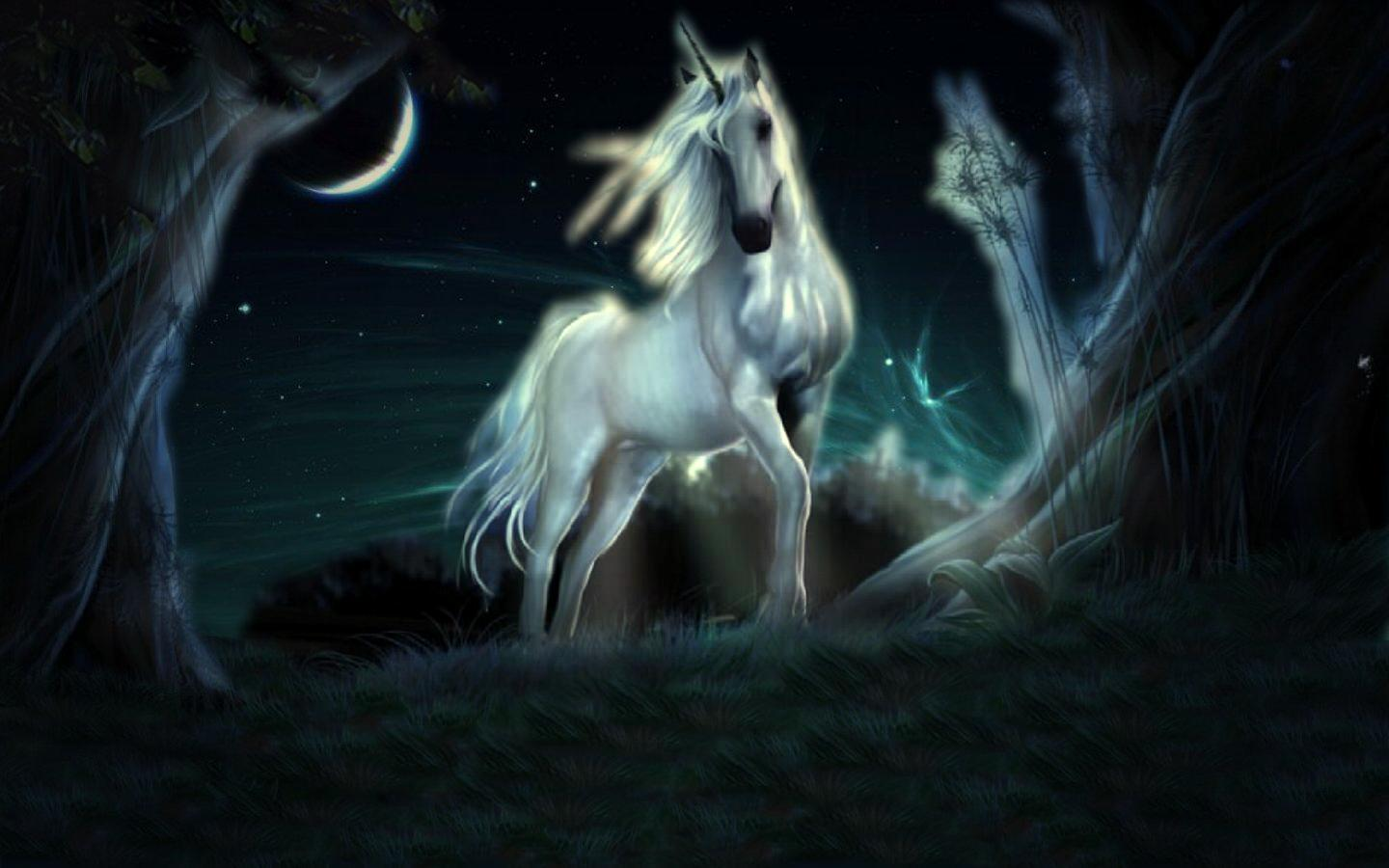 Hd wallpaper unicorn -  Unicorn Hd Widescreen Wallpaper Download