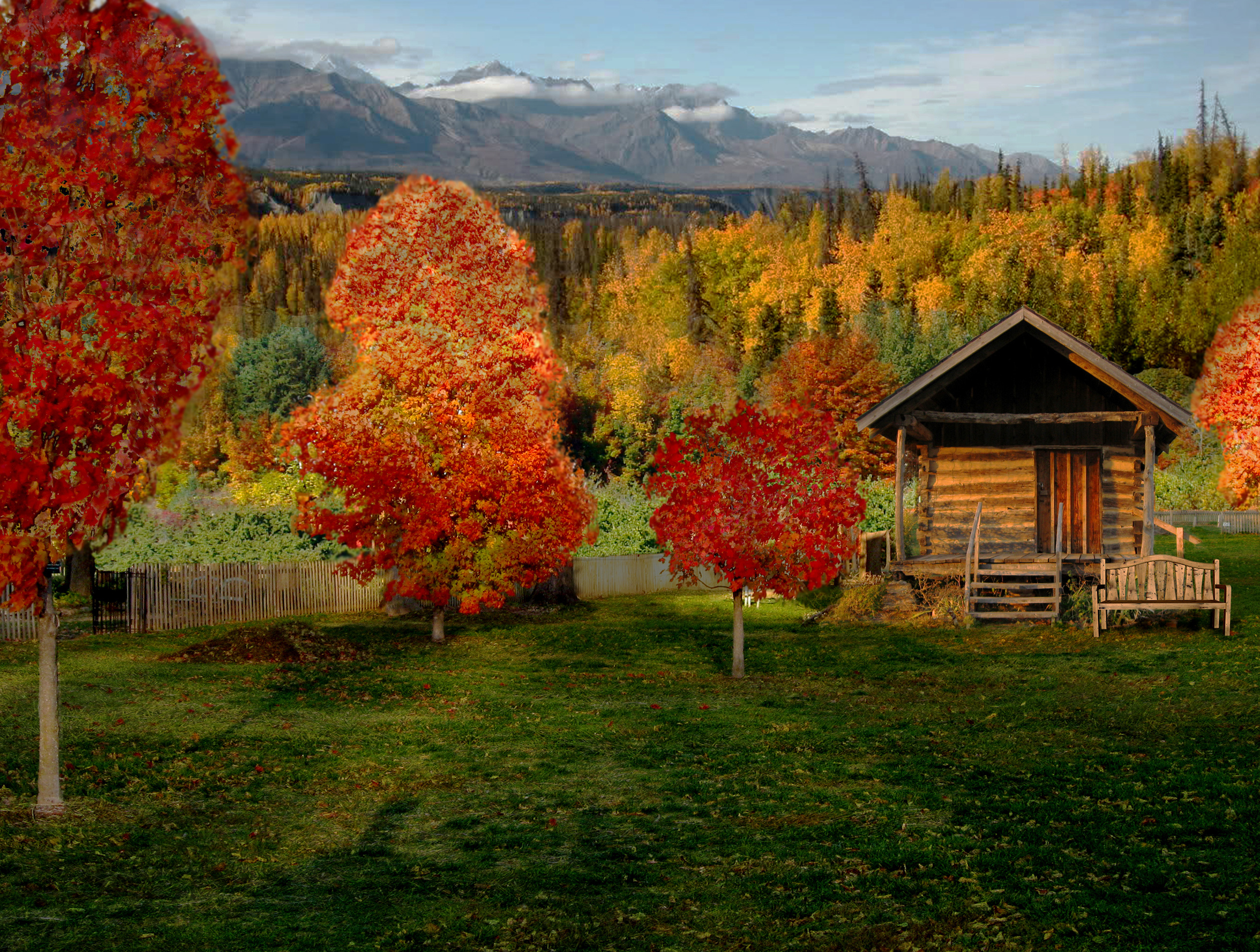 Free Fall Cartoon Wallpaper Cabin Wallpapers Pictures Images