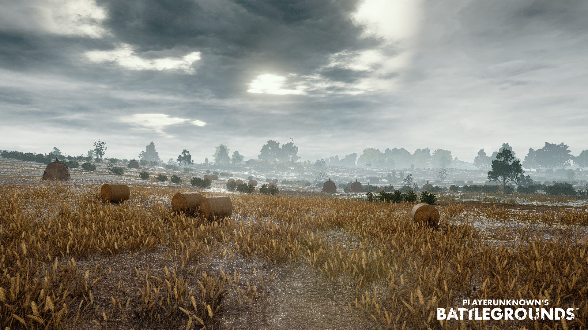 Pubg Wallpapers Phone Playerunknown S Battlegrounds Backgrounds