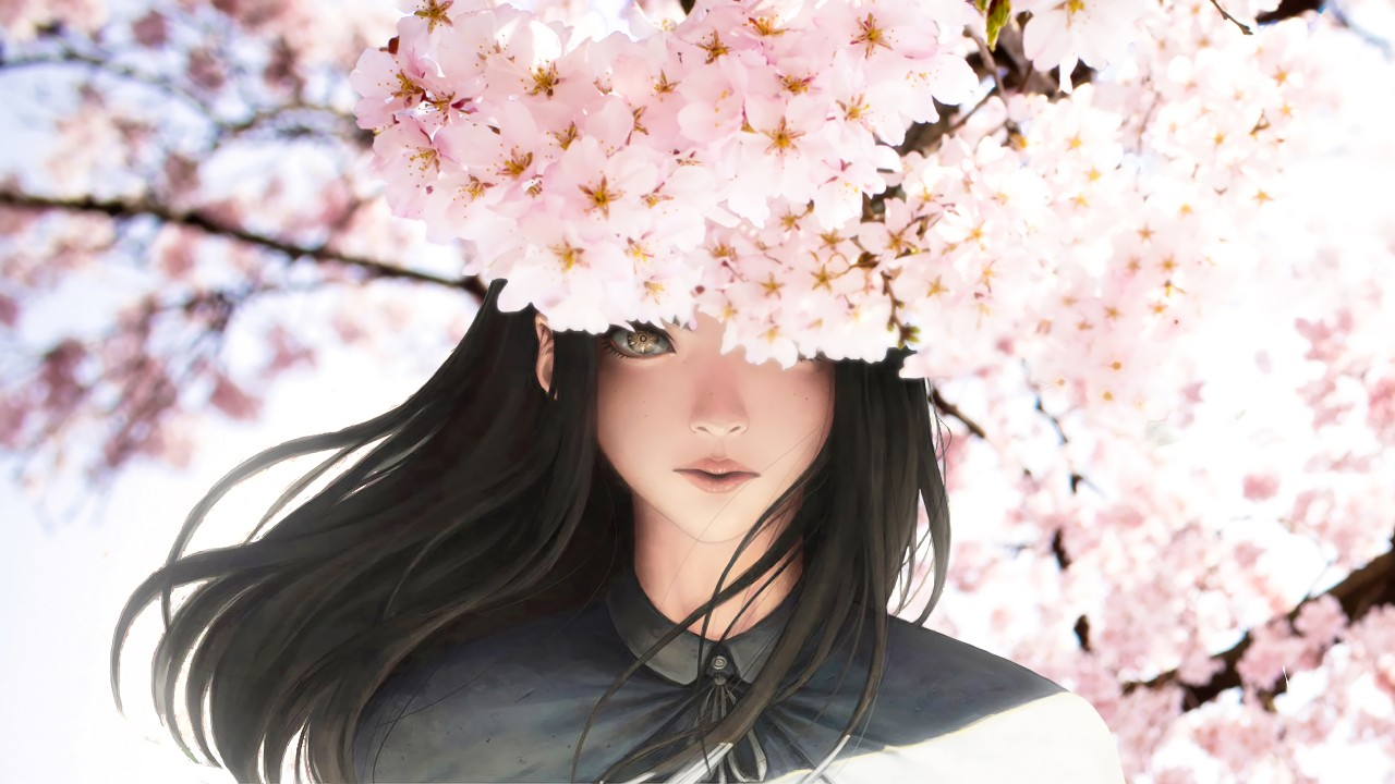 Cherry Blossom Wallpaper Hd Beautiful Anime Girl Wallpapers Hd Wallpapers Id 23941