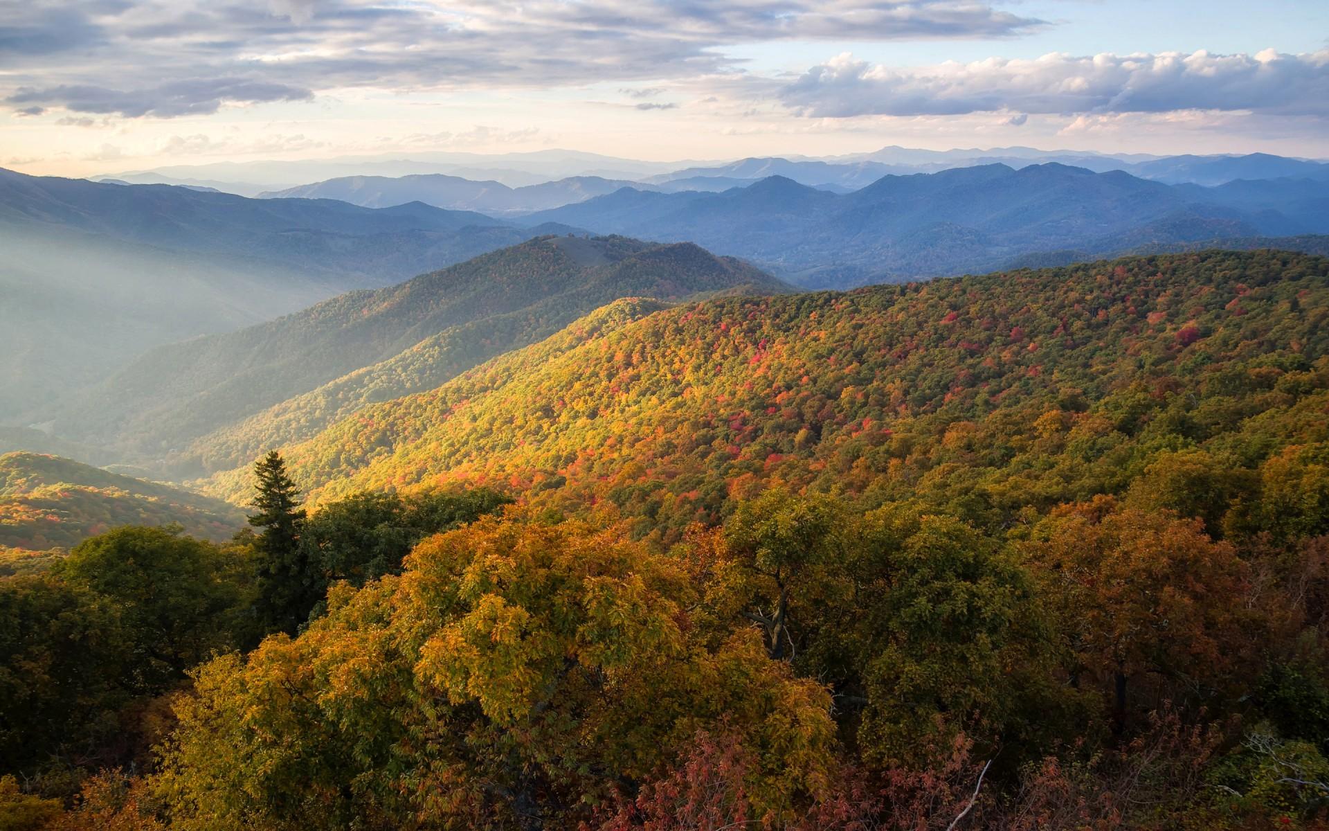 Fall Sunflower Desktop Wallpaper Blue Ridge Mountains North Carolina Wallpapers Hd
