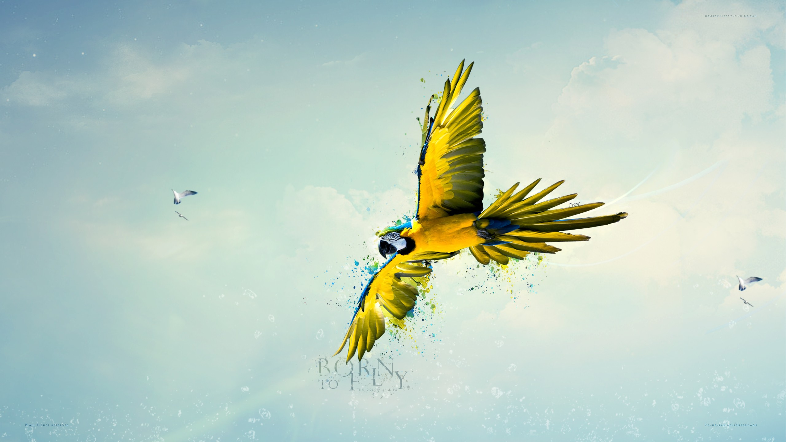 Love Wallpaper Hd 3d Born To Fly Wallpapers Hd Wallpapers Id 13343
