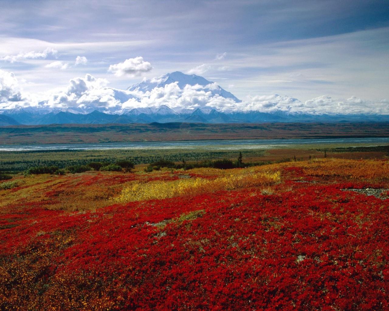 Windows 10 Wallpaper Hd 3d For Desktop Brilliant Colors Of Denali National Park Alaska